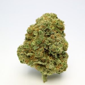 Master Yoda For sale Online